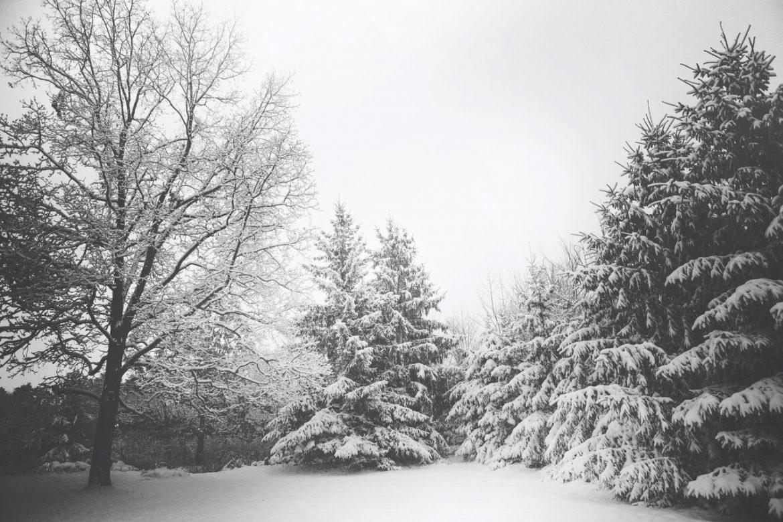 Wo kann man im Winter schlafen?
